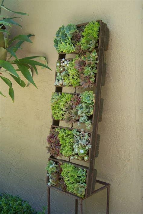 Vertical Succulent Garden Indoor by Succulent Planter To Make Awesome Indoor Garden Homesfeed