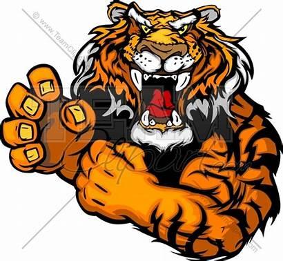 Tiger Mascot Clipart Football Tough Auburn Clemson