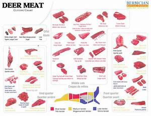An Illustrated Guide To The Best Game Meat Cuts