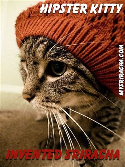 Hipster Cat Meme - 30 best images about sriracha memes on pinterest everything emo and chemistry cat