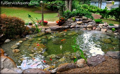 Backyard Garden Ponds by Beautiful Koi Pond With Arbor Seating Area Installed Be