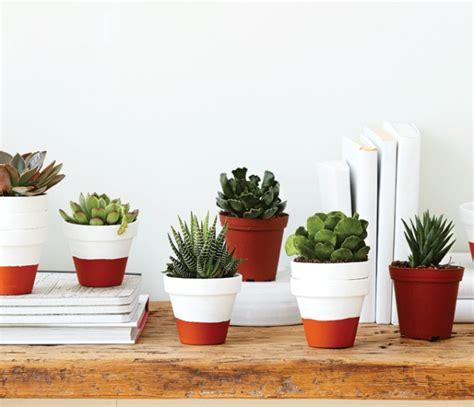 Window Seal Pots by Create A Modern Indoor Garden With Terracotta Pots