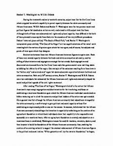 booker t washington essay