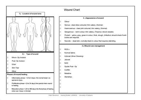 Beautiful Wound Chart Template Motif Professional Resume