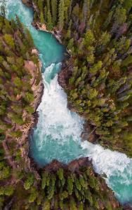 Deep, Forest, River