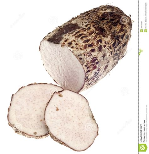 Taro Root Yam Vegetable Stock Images  Image 20019484