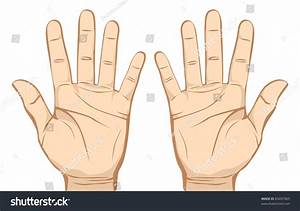 Pair Hands (Palm) Isolated On White Background. Stock ...