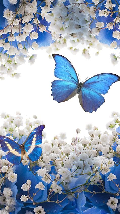 Phone Butterfly Wallpapers - Wallpaper Cave
