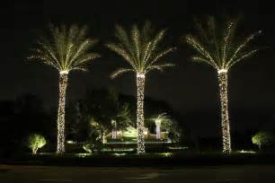 Lighted Christmas Palm Tree
