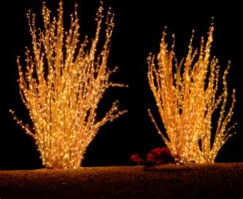 outdoor festive lighting howstuffworks