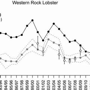 (PDF) Recreational fisheries data requirements for ...