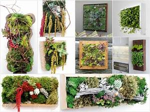 Pflanzen An Der Wand : blumendekoration lebendige wanddekoration aus blumen und pflanzen ~ Markanthonyermac.com Haus und Dekorationen