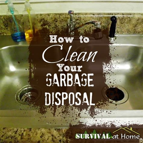 how to clean sink disposal how to clean your garbage disposal survival at home