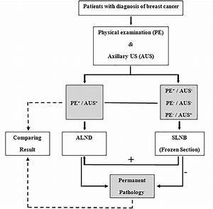 The Accuracy Of Preoperative Axillary Ultrasound In The