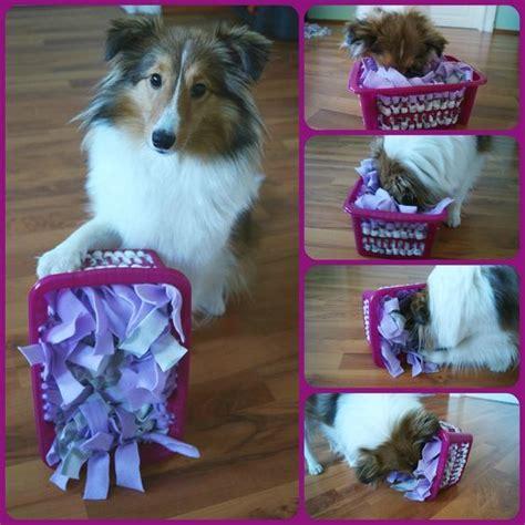 schnueffelkorb dogs pinterest hunde hundespielzeug