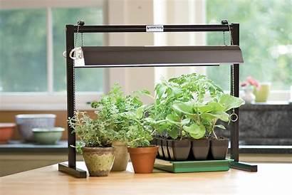 Grow Lights Garden Kits Gardening Tabletop Tips