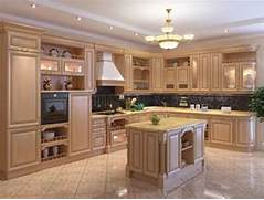 New Design Of Kitchen Cabinet by Home Decoration Design Kitchen Cabinet Designs 13 Photos