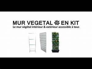 Mur Végétal Extérieur : le mur vegetal en kit youtube ~ Premium-room.com Idées de Décoration