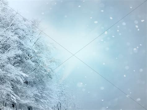 christmas snow white worship background hd worship