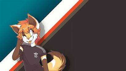 Furry Wallpapers 1080p