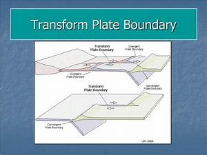 PPT - Describe the differences and relation between the ...