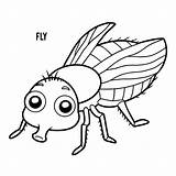 Fly Coloring Vlieg Hoverfly Clip Fluga Mouche Illustrations Cartoon Ladybug Coloriage Livre Kleurend Boek Illustrationer Dessin Sequence Animal Housefly Cycle sketch template