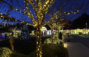 10 places to see Christmas lights in the Tampa Bay area