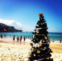 17 images about christmas down under on pinterest christmas trees christmas in australia and
