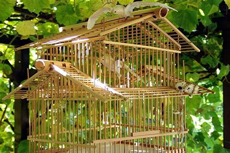 rohstoff bambus und seine bedeutung fuer bett und