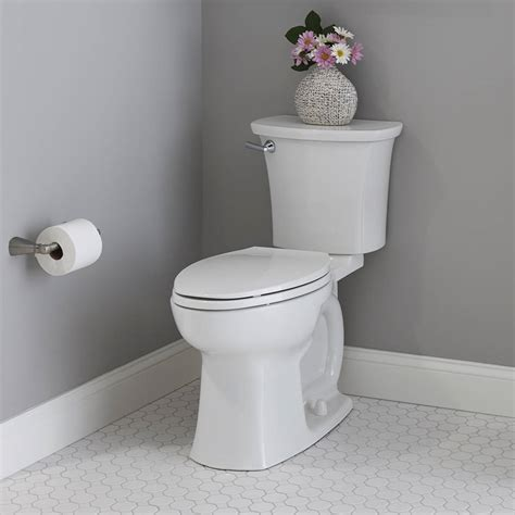 edgemere  height elongated toilet   rough