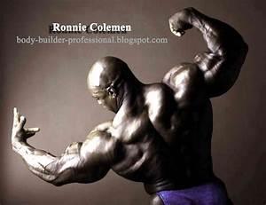 Body Builder Professional  2013