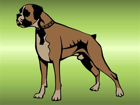 Boxer Dog Vector Art & Graphics