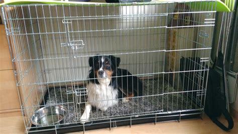avis sur cage de transport pour chien zolia koda avec fond plastique noir