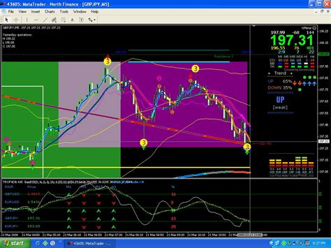 marsi trading system forex strategies forex resources