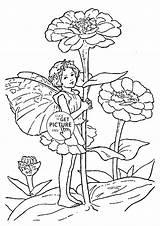 Coloring Zinnia Fairy Flower Printables Border Wuppsy Designlooter Para Colorear Drawings Template Visitar Sketch 1480 81kb Artículo sketch template