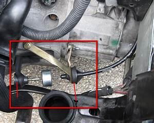 Embrayage 206 1 4 Hdi : cable embrayage 206 hdi dealtastique ~ Melissatoandfro.com Idées de Décoration
