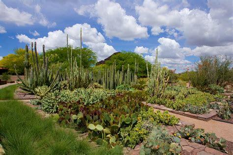 Desert Botanical Garden, Phoenix, Central Arizona