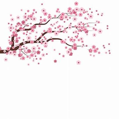 Sakura Falling Cherry Blossom Sticker Giphy Spring