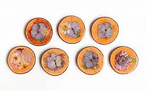 DIY Dried Flower Coasters - The Crafted Life