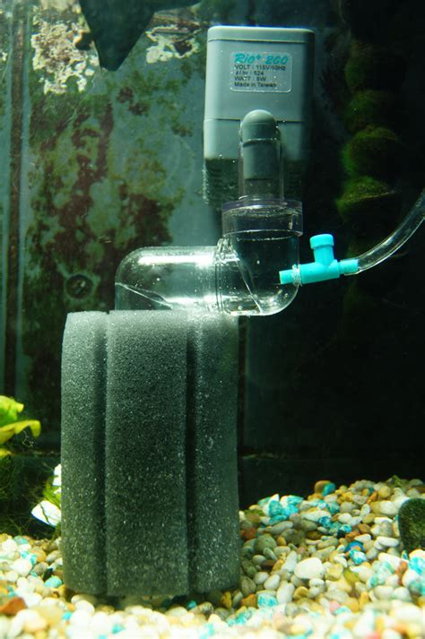 diy co2 diffuser for yeast system everything aquatic forum board