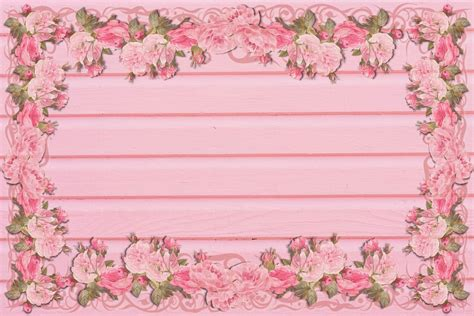 pink peony outline  image  pixabay