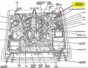 Ford E4od Transmission Wiring Harness Diagram