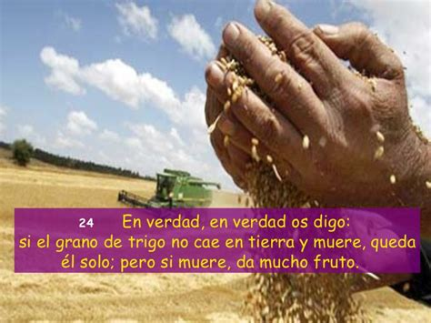 Evangelio San Juan 12, 20 33