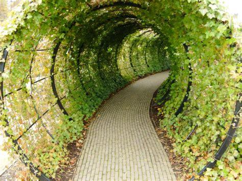 poison gardens alnwick poison gardens where plants can kill