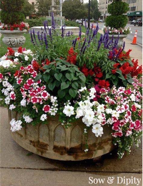 Recipes Patriotic Planting by 14 Designer Planter Ideas Container Gardening