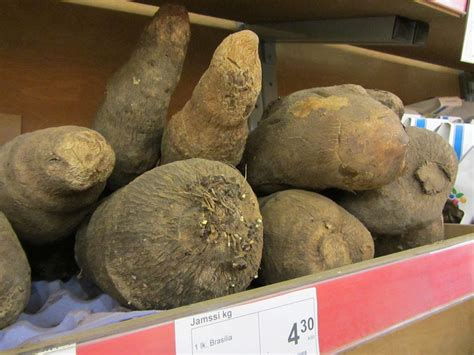A Guide To The Roots And Tubers You Didn't Know You Loved