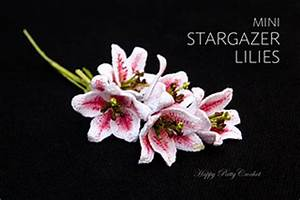 American Rose Size Chart Ravelry Mini Stargazer Lily Pattern By Happy Patty Crochet