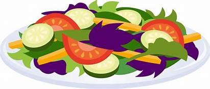 Salad Clip Clipart Cliparts Plate Salads Healthy