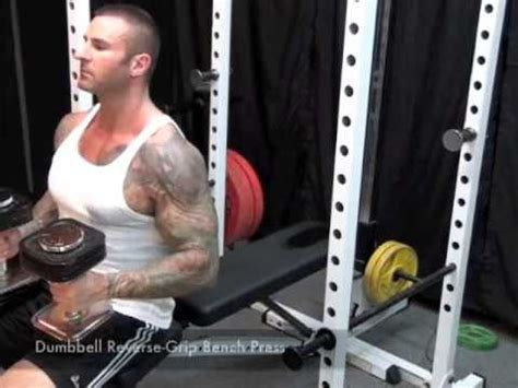 chair crunch jim stoppani dumbbell grip bench press by jim stoppani
