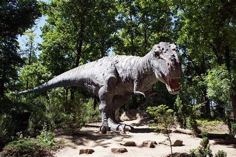 tierlexikon tyrannosaurus rex geolino